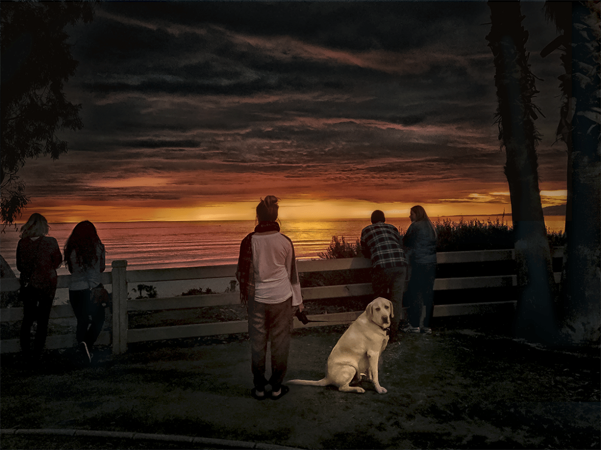 Everybody watching the sunset except a dog turning to look at me and my camera